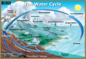 USGS Water Cycle Chart