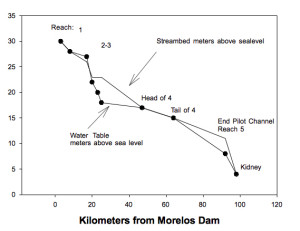 Pre-Pulse graph of Colorado Delta Streambed and Water Levels (in meters above sealevel). (Courtesy of Edward Glenn)