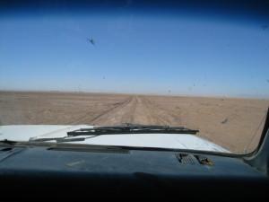 Mudflats leading to Ciénega de Santa Clara (Rick Bowman)